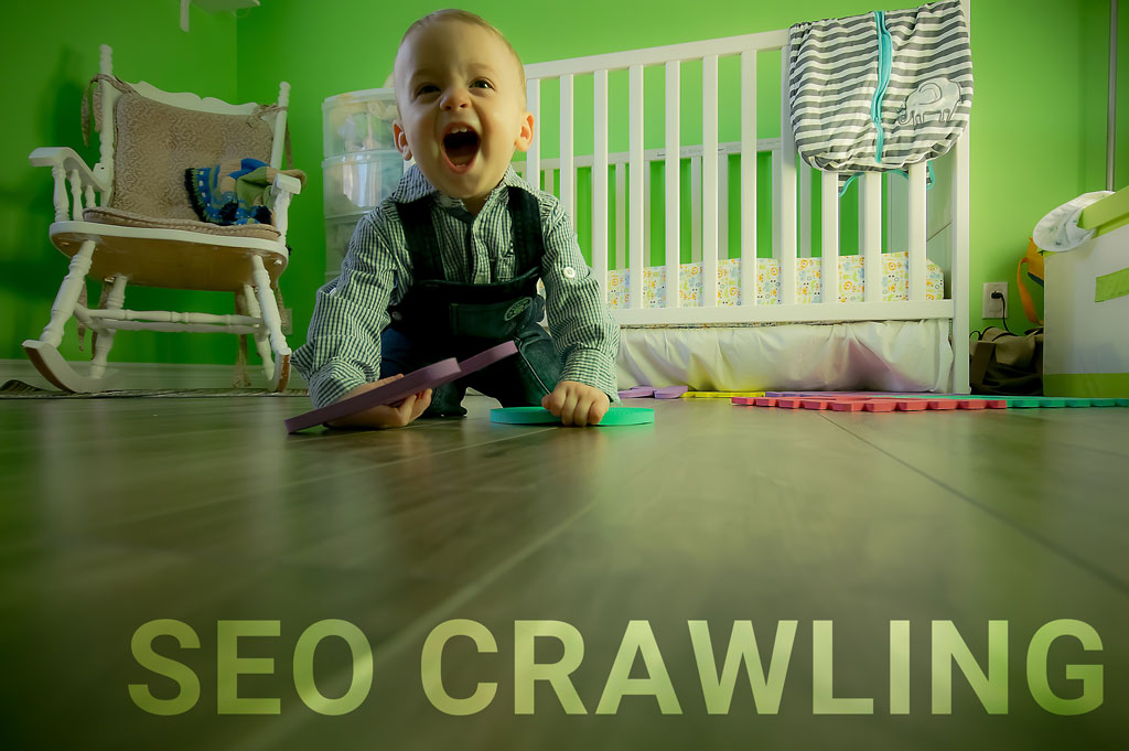 Search Engine Crawling